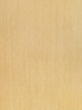 Yohan Wood