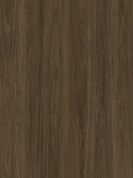 Raw Umber Chestnut