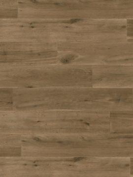 Smith Plank