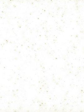 Sanded Cream