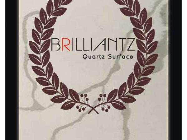 Brilliantz E Catalogue 2020-2021_page-0001