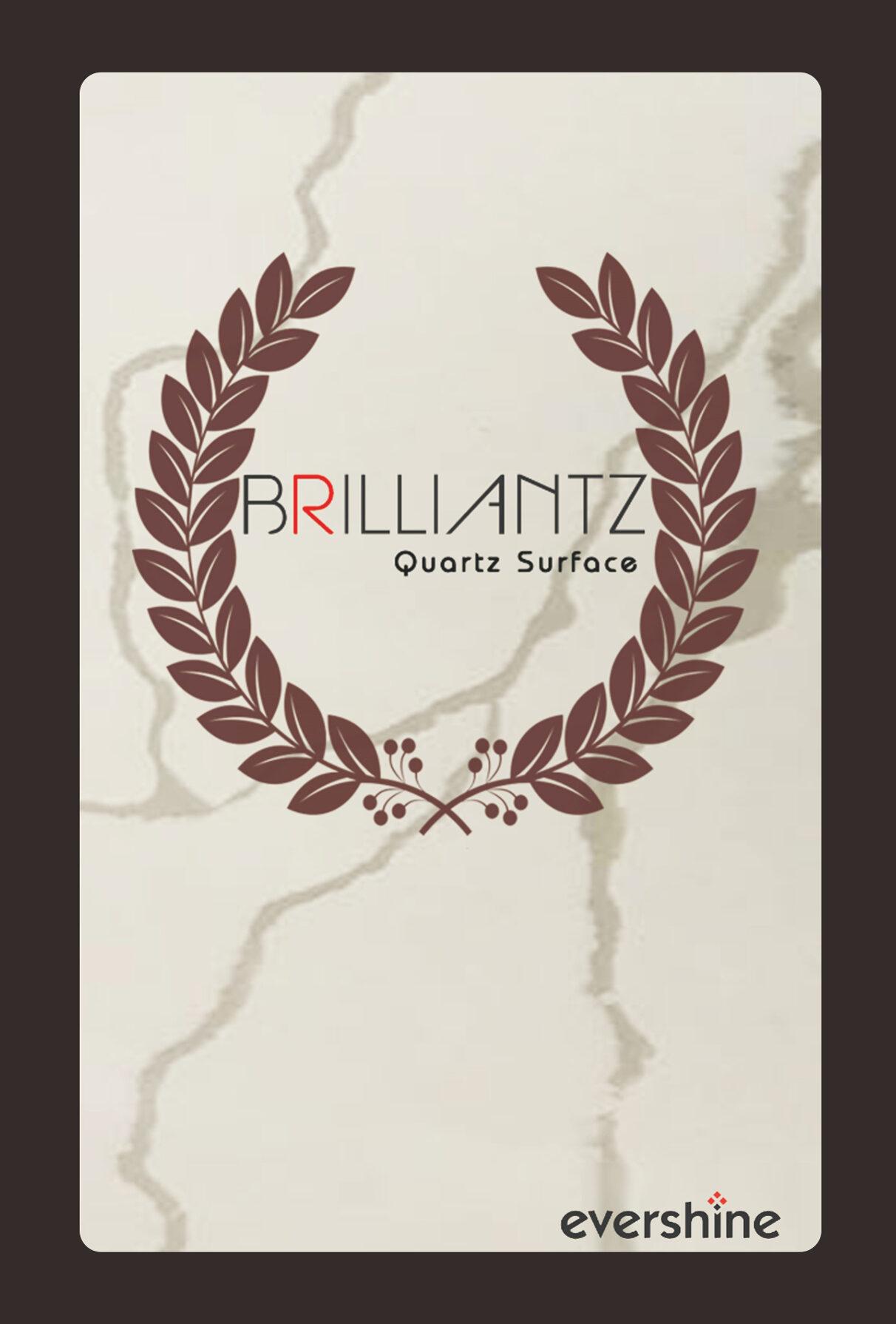 1_Brilliantz 2021 revised Oct 21_front